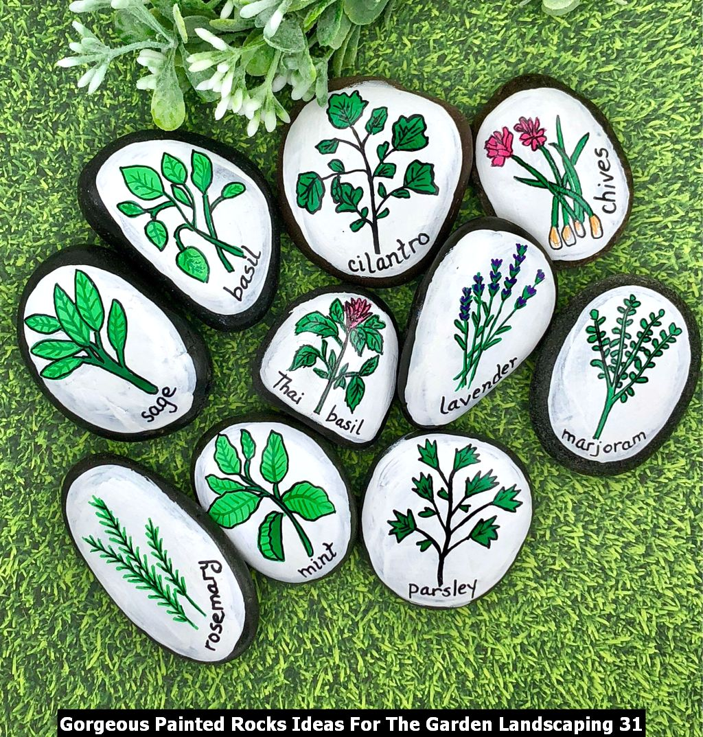 Gorgeous Painted Rocks Ideas For The Garden Landscaping 31