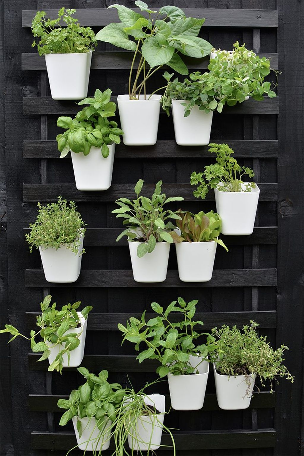 Nice Vertical Garden Wall Decor Ideas Look Beautiful 02