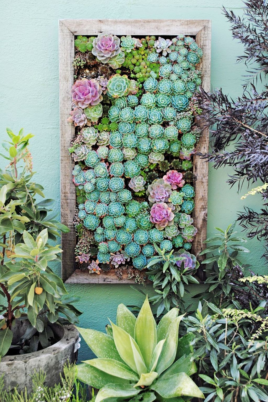 Nice Vertical Garden Wall Decor Ideas Look Beautiful 04