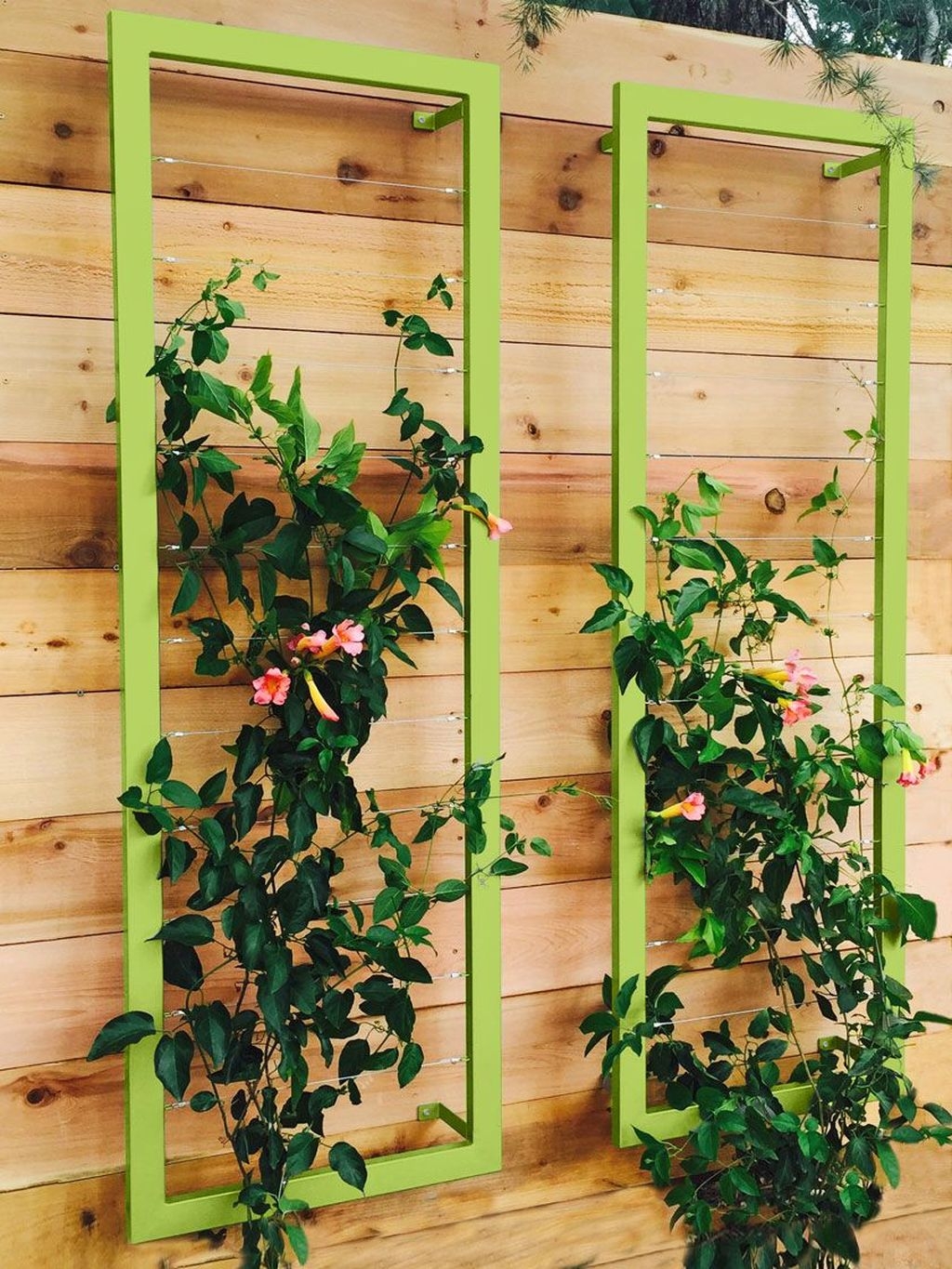 Nice Vertical Garden Wall Decor Ideas Look Beautiful 13