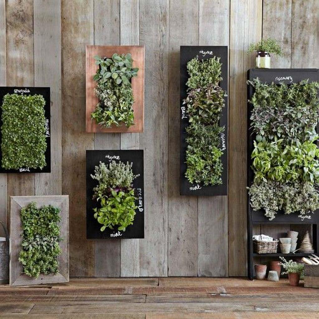 Nice Vertical Garden Wall Decor Ideas Look Beautiful 16