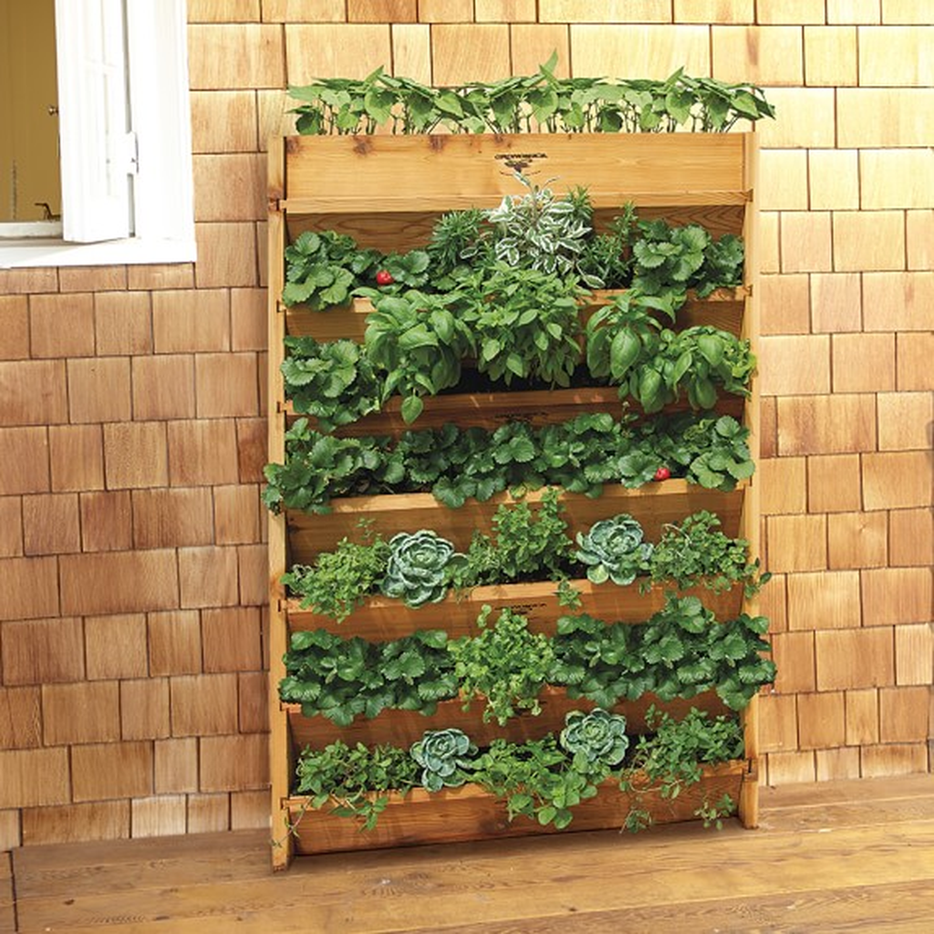 Nice Vertical Garden Wall Decor Ideas Look Beautiful 27