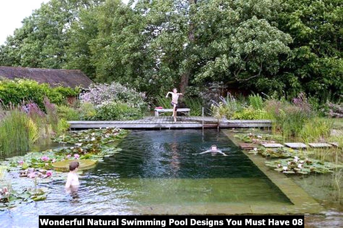 Wonderful Natural Swimming Pool Designs You Must Have 08