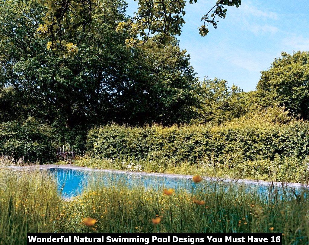 Wonderful Natural Swimming Pool Designs You Must Have 16