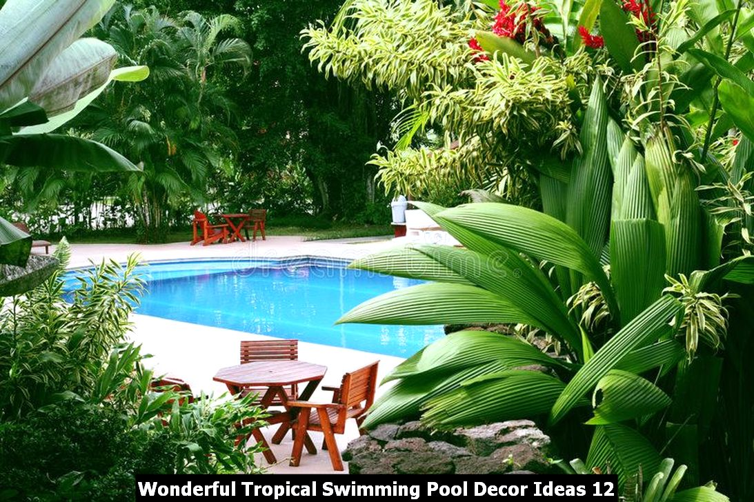 Wonderful Tropical Swimming Pool Decor Ideas 12