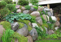 Rock Wall Garden Ideas