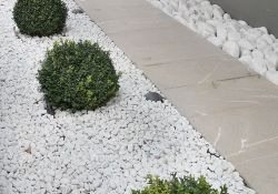 White Rock Garden Ideas