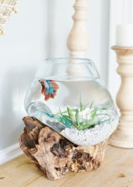 Splendid Coastal Living Area Ideas For Home Look Fabulous 12