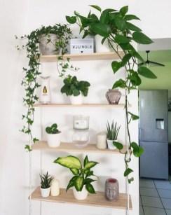 Extraordinary Indoor Garden Design And Remodel Ideas For Apartment 19