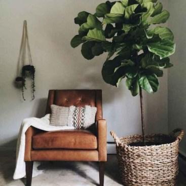 Extraordinary Indoor Garden Design And Remodel Ideas For Apartment 24