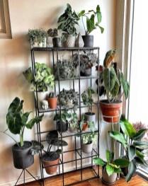 Extraordinary Indoor Garden Design And Remodel Ideas For Apartment 48