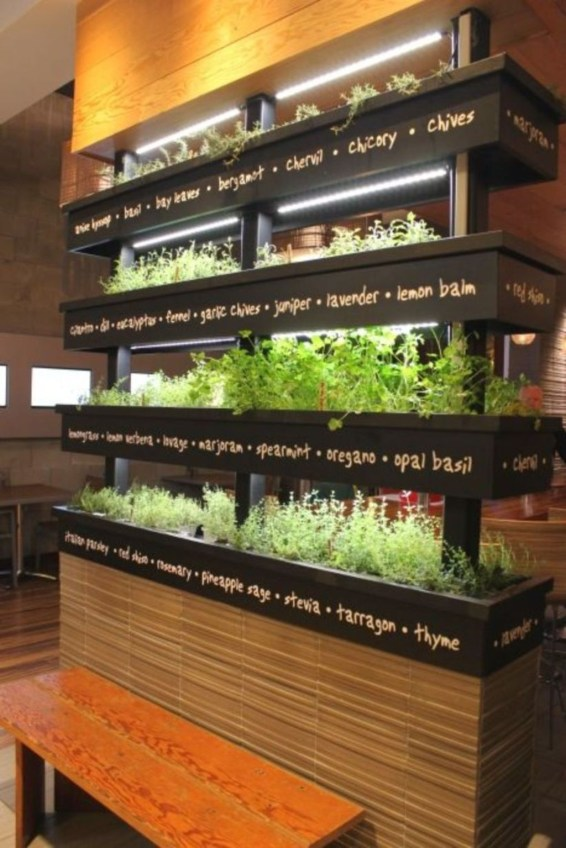 Extraordinary Indoor Garden Design And Remodel Ideas For Apartment 51