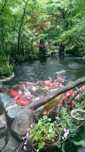Cool Fish Pond Garden Landscaping Ideas For Backyard 12