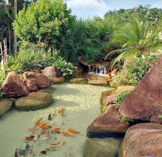 Cool Fish Pond Garden Landscaping Ideas For Backyard 14