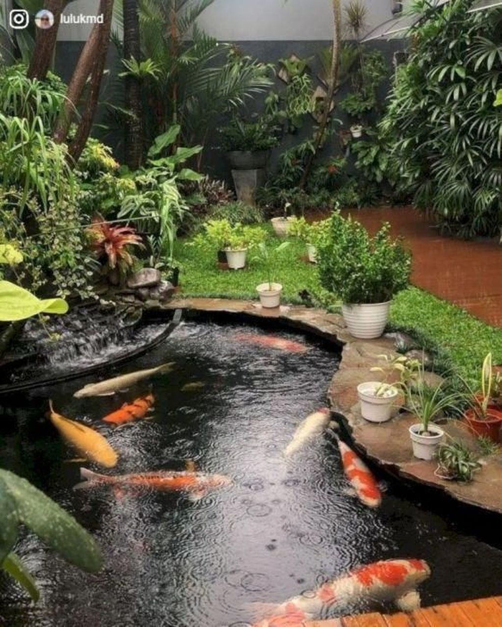 Cool Fish Pond Garden Landscaping Ideas For Backyard 31