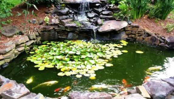 Cool Fish Pond Garden Landscaping Ideas For Backyard 42
