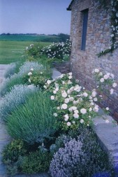 Modern Flower Beds Rocks Ideas For Front House To Try 23