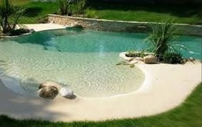Top Natural Small Pool Design Ideas To Copy Asap 11