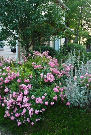Amazing Design For Tiny Yard Garden 19