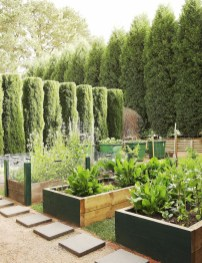 Exciting Ideas To Grow Veggies In Your Garden 07