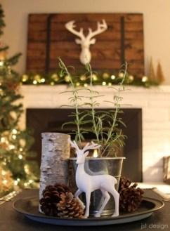 Amazing Christmas Centerpieces Decoration Ideas 21
