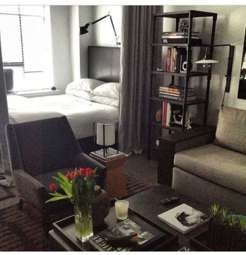 Brilliant Studio Apartment Decor Ideas On A Budget 36