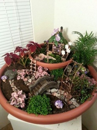 Pretty Fairy Garden Plants Ideas For Around Your Side Home 07