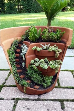 Pretty Fairy Garden Plants Ideas For Around Your Side Home 18