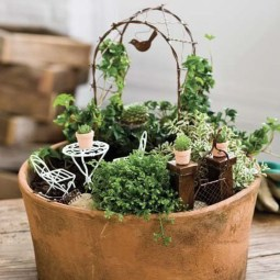 Pretty Fairy Garden Plants Ideas For Around Your Side Home 33