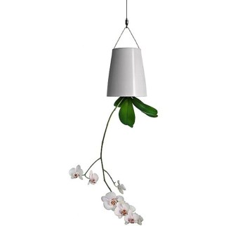 Beautiful Hanging Planter Ideas For Outdoor 10