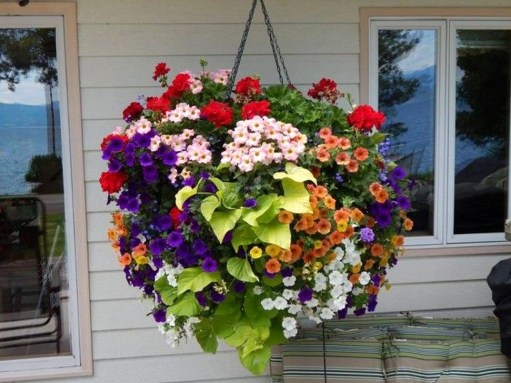 Beautiful Hanging Planter Ideas For Outdoor 41