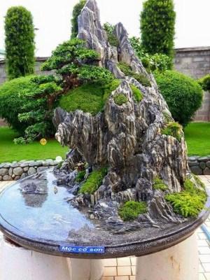 Inspiring Bonsai Tree Ideas For Your Garden 32