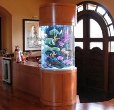 Modern Aquarium Partition Ideas For Living Room 27