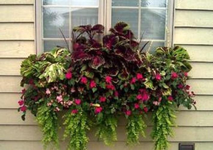 Wonderful Window Box Planters Yo Beautify Up Your Home 27