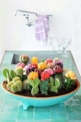 Cool Small Cactus Ideas For Home Decoration 43