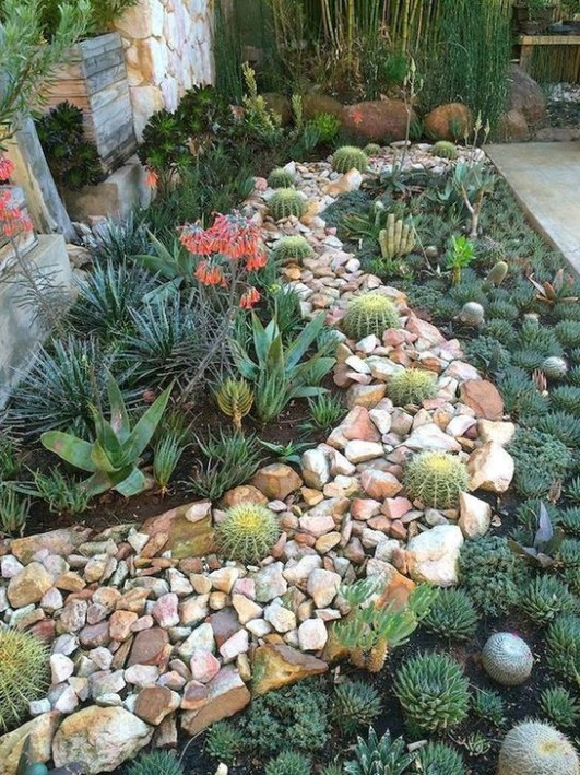Best Ideas For Garden Succulent Landscaping 47