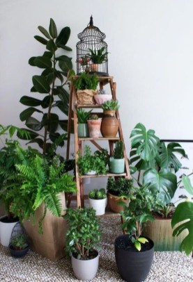 Modern Plant In Pot Ideas For Your House Decoration 06