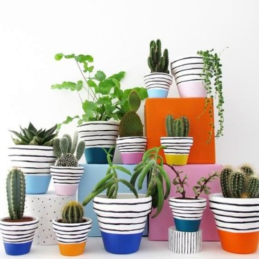 Modern Plant In Pot Ideas For Your House Decoration 26