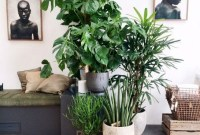 Modern Plant In Pot Ideas For Your House Decoration 40