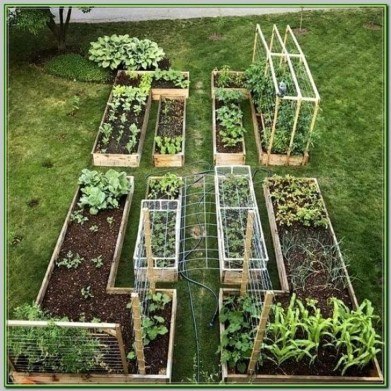 Stunning DIY Garden Bed To Beautify Your Backyard 11