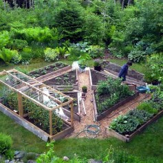 Stunning DIY Garden Bed To Beautify Your Backyard 27