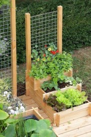 Extraordinary Vegetables Garden Ideas For Backyard 01