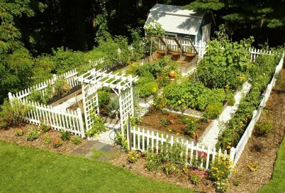 Extraordinary Vegetables Garden Ideas For Backyard 03