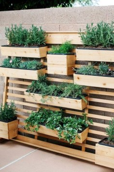 Extraordinary Vegetables Garden Ideas For Backyard 06