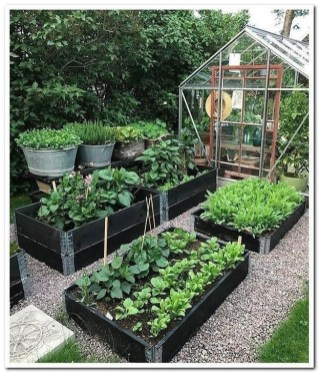 Extraordinary Vegetables Garden Ideas For Backyard 18