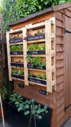 Extraordinary Vegetables Garden Ideas For Backyard 40