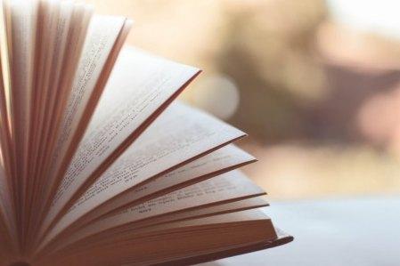 book, knowledge, ಪುಸ್ತಕ, ಹೊತ್ತಗೆ