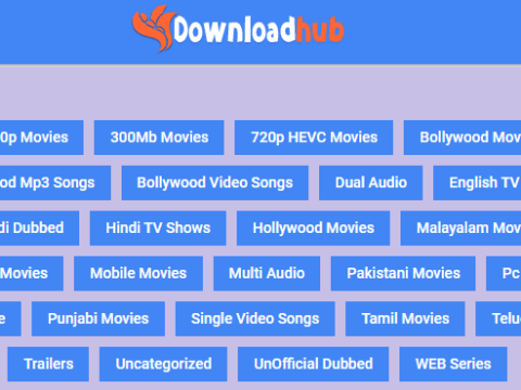 DownloadHub Movies