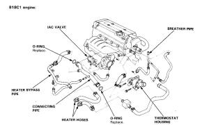 Engine partment hose diagram B18C1?  HondaTech