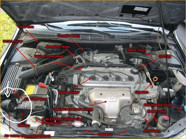98 honda accord engine diagram  auto wiring diagrams rich
